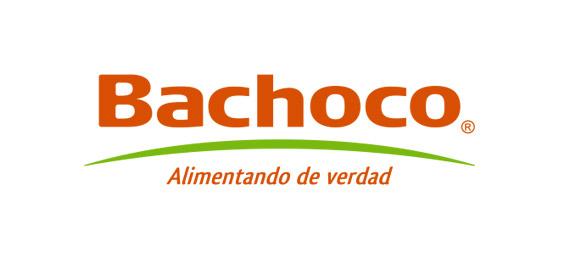 https://ardipu.com/wp-content/uploads/2019/07/bachoco.jpg
